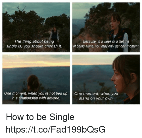 Being Alone, Memes, and How To: The thing about being  single is, you should cherish it  Because, in a week or a lifetime  of being alone, you may only get one moment  One moment, when you're not tied up One moment, when you  in a relationship with anyone  stand on your own How to be Single https://t.co/Fad199bQsG