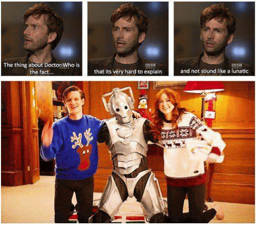 memes: The thing about Doctor Who is  the fact  that its very hard to explain  and not sound like a lunatic  24