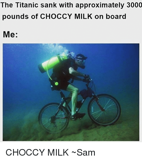 Memes, Titanic, and Board: The Titanic sank with approximately 3000  pounds of CHOCCY MILK on board  Me CHOCCY MILK ~Sam