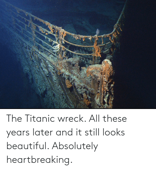 Titanic: The Titanic wreck. All these years later and it still looks beautiful. Absolutely heartbreaking.