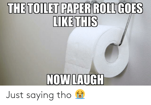 toilet-paper-roll: THE TOILET PAPER ROLL GOES  LIKE THIS  NOW LAUGH Just saying tho 😭