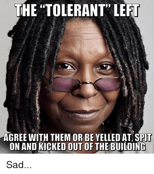 """Memes, Sad, and 🤖: THE """"TOLERANT"""" LEFT  AGREE WITH THEM OR BE YELLED AT SPlT  ON AND KICKED OUT OF THE BUILDINC Sad..."""