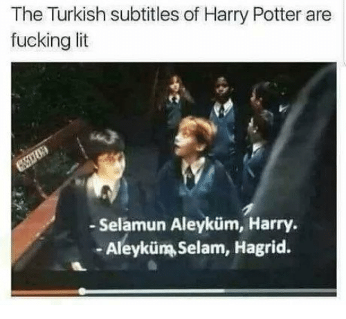 hagrid: The Turkish subtitles of Harry Potter are  fucking lit  - Selamun Aleyküm, Harry  -Aleyküm Selam, Hagrid.