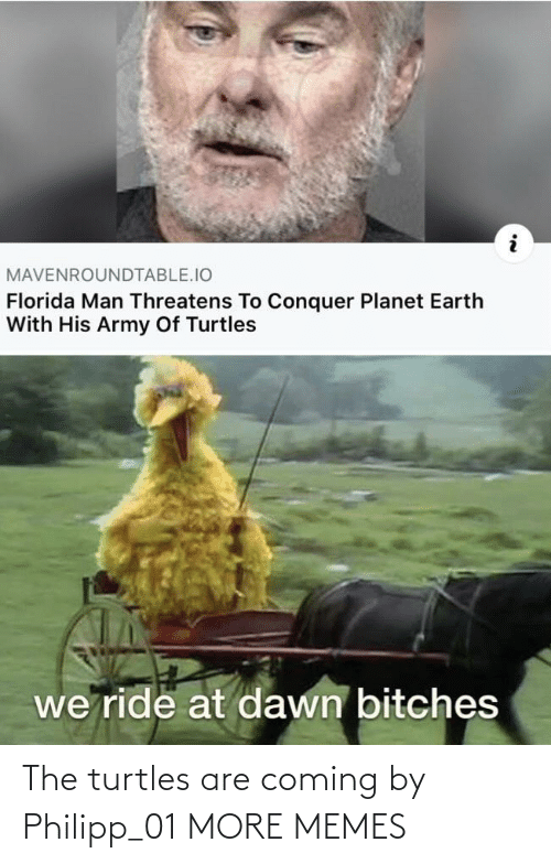 turtles: The turtles are coming by Philipp_01 MORE MEMES