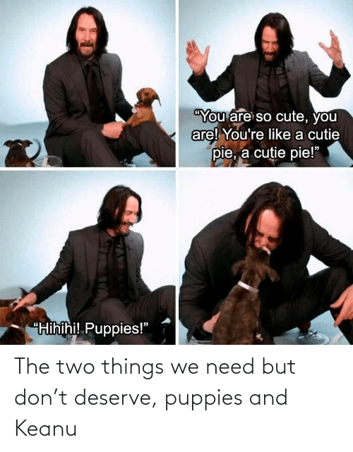 things: The two things we need but don't deserve, puppies and Keanu
