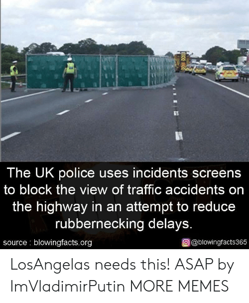 The View: The UK police uses incidents screens  to block the view of traffic accidents on  the highway in an attempt to reduce  rubbernecking delays  source blowingfacts.org  o @blowingfacts365 LosAngelas needs this! ASAP by ImVladimirPutin MORE MEMES