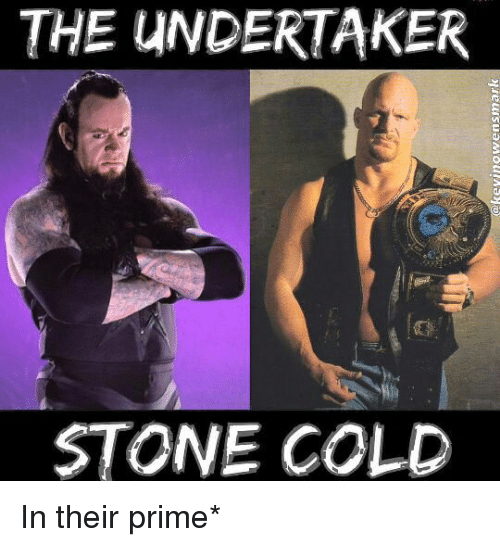 The Undertaker: THE UNDERTAKER  STONE COLD In their prime*