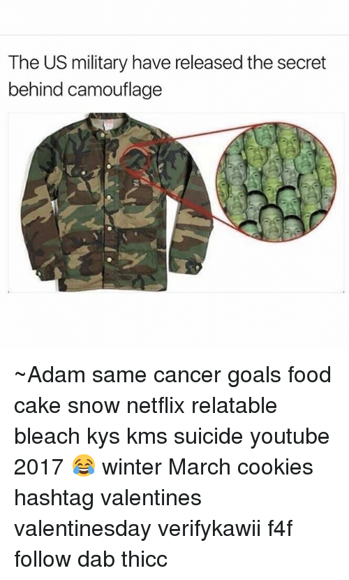 Dab: The US military have released the secret  behind camouflage ~Adam same cancer goals food cake snow netflix relatable bleach kys kms suicide youtube 2017 😂 winter March cookies hashtag valentines valentinesday verifykawii f4f follow dab thicc