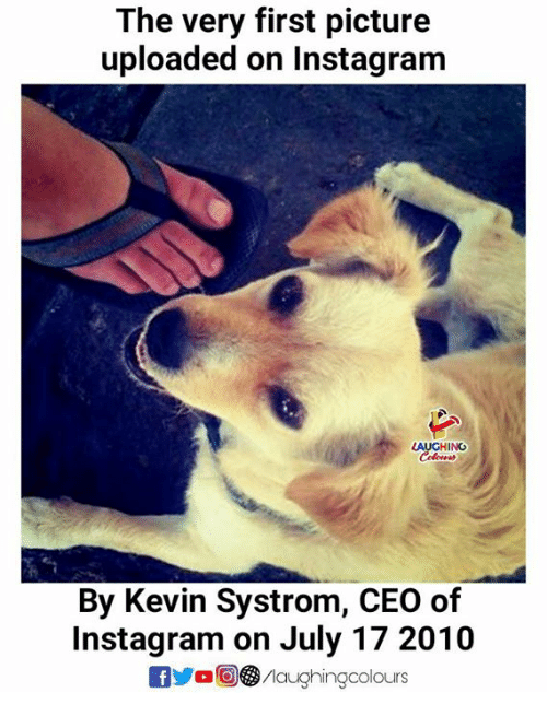 Instagram, Indianpeoplefacebook, and Ceo: The very first picture  uploaded on Instagram  LAUCHING  By Kevin Systrom, CEO of  Instagram on July 17 2010  yaG③/laughingcolours