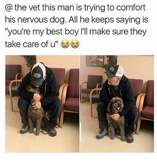 "Memes, Best, and Boy: @ the vet this man is trying to comfort  his nervous dog. All he keeps saying is  ""you're my best boy l'll make sure they  take care of u"""