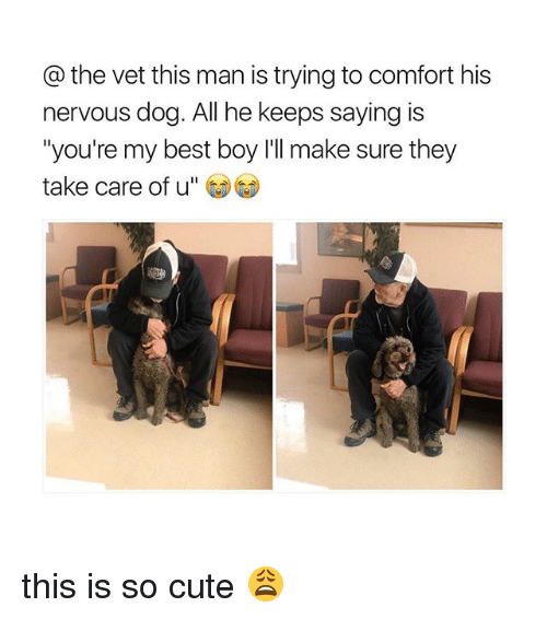 """vetting: the vet this man is trying to comfort his  nervous dog. All he keeps saying is  """"you're my best boy I'll make sure they  take care of u this is so cute 😩"""