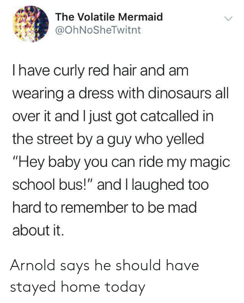 "red hair: The Volatile Mermaid  @OhNoSheTwitnt  Ihave curly red hair and am  wearing a dress with dinosaurs all  over it and I just got catcalled in  the street by a guy who yelled  ""Hey baby you can ride my magic  school bus!"" and I laughed too  hard to remember to be mad  about it. Arnold says he should have stayed home today"