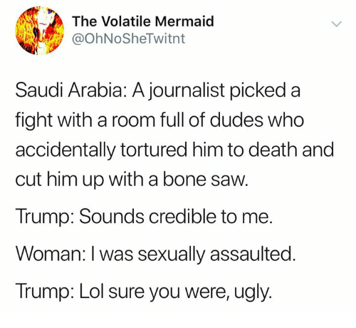 Saudi Arabia: The Volatile Mermaid  @OhNoSheTwitnt  Saudi Arabia: A journalist picked a  fight with a room full of dudes who  accidentally tortured him to death and  cut him up with a bone saw  Trump: Sounds credible to me.  Woman: I was sexually assaulted.  Trump: Lol sure you were, ugly