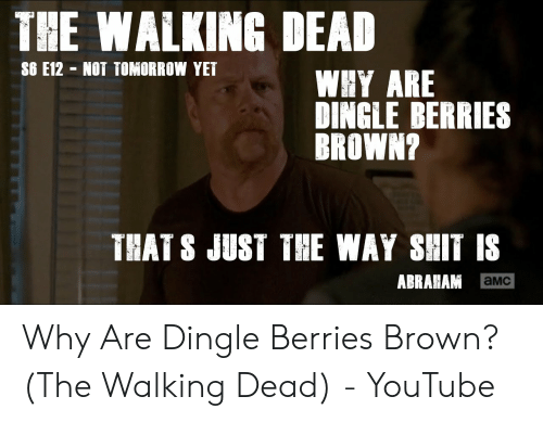 Dingle Berries: THE WALKING DEAD  S6 E12 NOT TOMORROW YET  WHY ARE  DINGLE BERRIES  BROWN?  THAT S JUST THE WAY SHIT IS  ABRAHAM  aMC Why Are Dingle Berries Brown? (The Walking Dead) - YouTube