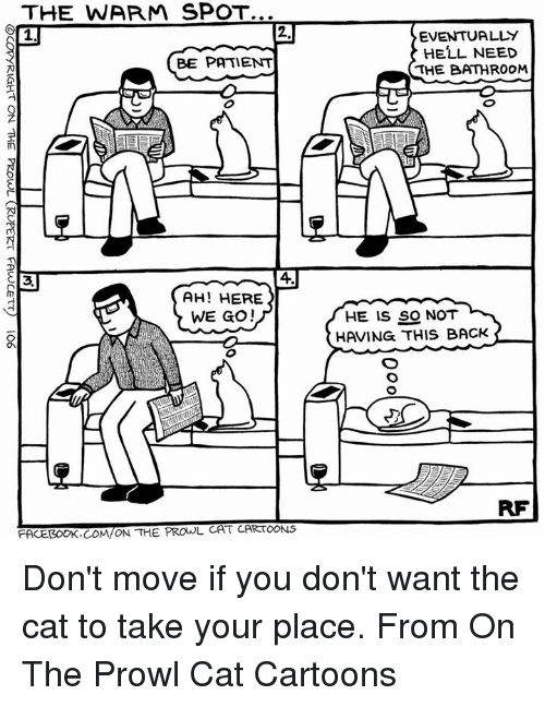 prowl: THE WARM SPOT...  BE PATIENT  AH! HERE  WE GO!  FACEBOOK. COM ON THE  PROwL CAT CARTOONS  EVENTUALLY  HELL NEED  THE BATHROOM  HE IS SO NOT Don't move if you don't want the cat to take your place. From On The Prowl Cat Cartoons