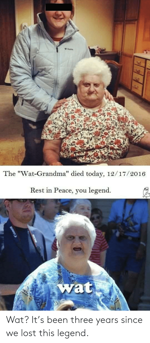 "wat: The ""Wat-Grandma"" died today, 12/17/2016  Rest in Peace, you legend.  wat  EEEF Wat? It's been three years since we lost this legend."