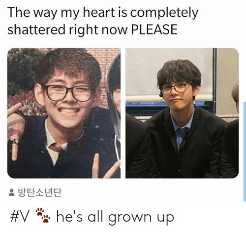 shattered: The way my heart is completely  shattered right now PLEASE  방탄소년단 #V 🐾 he's all grown up