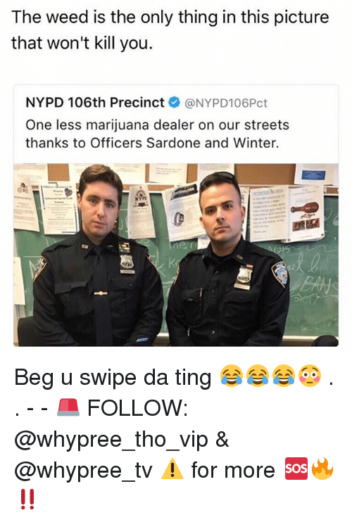 following: The weed is the only thing in this picture  that won't kill you.  NYPD 106th Precinct  @NYPD106Pct  One less marijuana dealer on our streets  thanks to Officers Sardone and Winter. Beg u swipe da ting 😂😂😂😳 . . - - 🚨 FOLLOW: @whypree_tho_vip & @whypree_tv ⚠️ for more 🆘🔥‼️