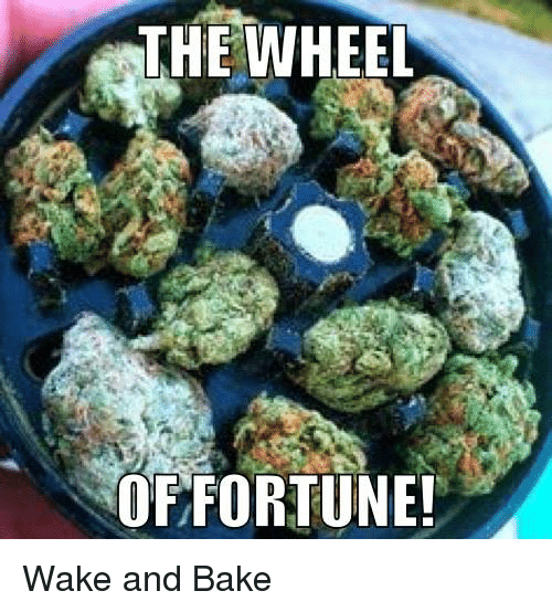 wheel of fortune: THE WHEEL  OF FORTUNE! Wake and Bake