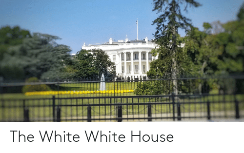 White House: The White White House
