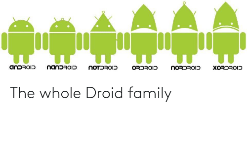 family: The whole Droid family