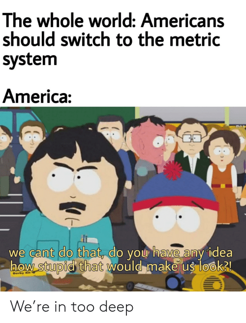 Too Deep: The whole world: Americans  should switch to the metric  system  America:  we cant do that, do you have any idea  aow stupid that would make us look2  Ber  ) We're in too deep