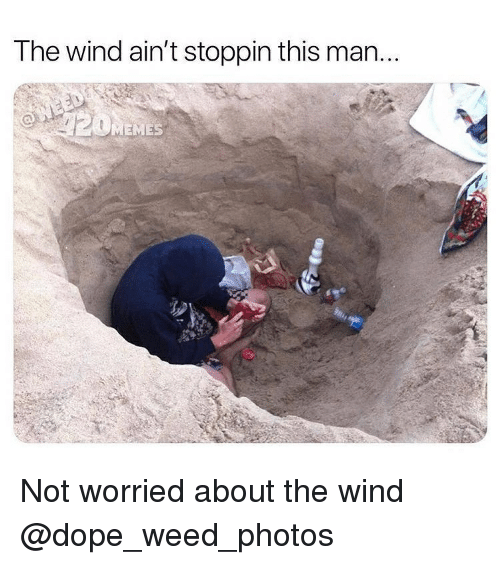 Dope, Memes, and Weed: The wind ain't stoppin this man..  MEMES Not worried about the wind @dope_weed_photos