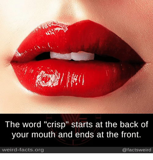 """Crispe: The word """"crisp"""" starts at the back of  your mouth and ends at the front.  weird-facts.org  @facts weird"""