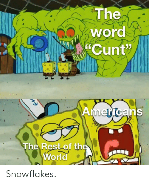 """snowflakes: The  word  Cunt""""  Americans  The Rest of the  World Snowflakes."""