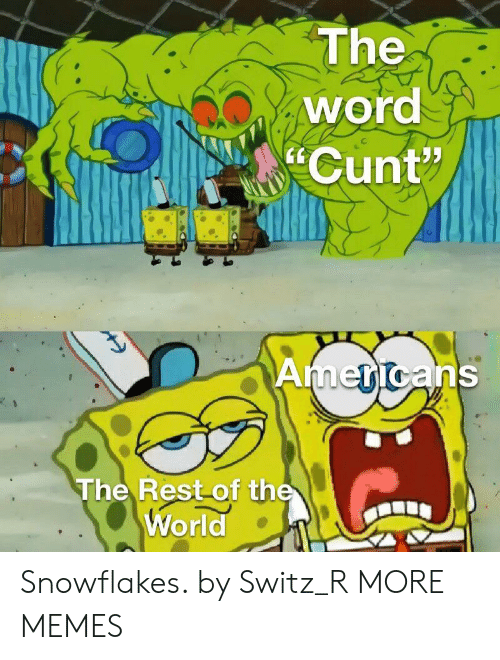 """snowflakes: The  word  Cunt""""  Americans  The Rest of the  World Snowflakes. by Switz_R MORE MEMES"""