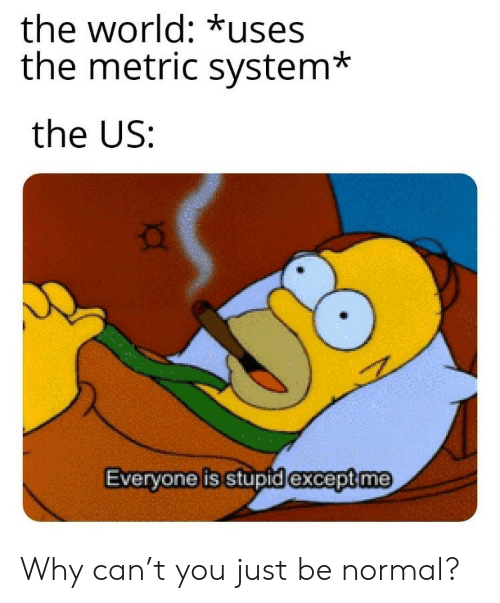 metric system: the world: *uses  the metric system*  the US:  exceptme  Evervone is stupidi Why can't you just be normal?
