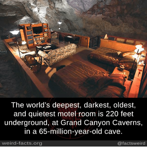 Memes, 🤖, and Feet: The world's deepest, darkest, oldest,  and quietest motel room is 220 feet  underground, at Grand Canyon Caverns,  in a 65-million-year-old cave.  weird-facts org  @facts weird