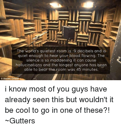 The World\'s Quietest Room Is -9 Decibels and Is Quiet Enough to Hear ...