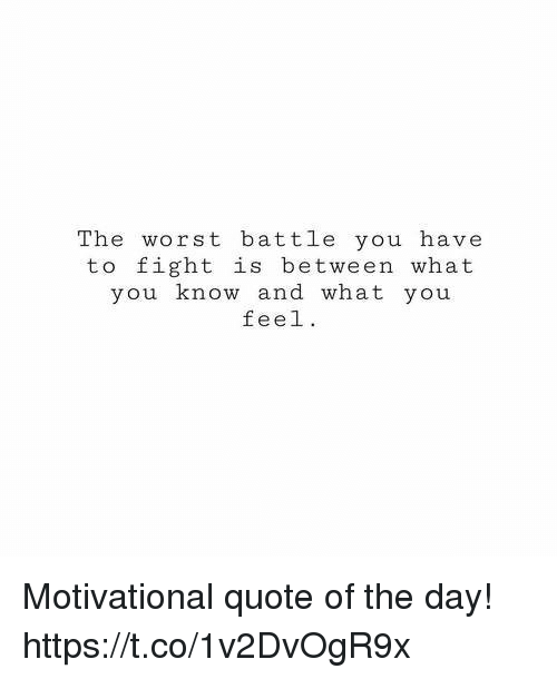 Memes, The Worst, and Fight: The worst battle you have  to fight is between what  you know and what you  feel. Motivational quote of the day! https://t.co/1v2DvOgR9x