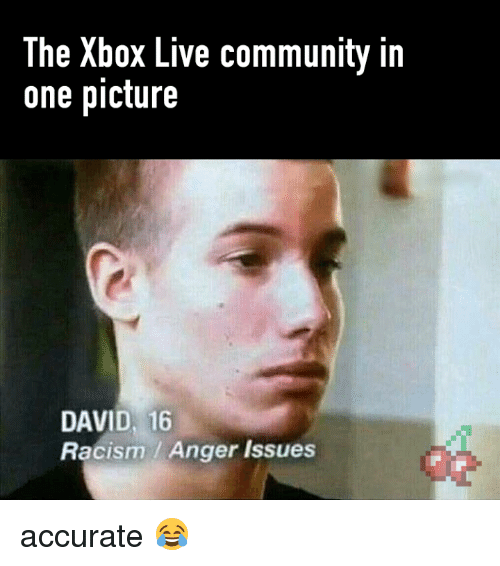 Community, Racism, and Video Games: The Xbox Live community in  one picture  DAVID, 16  Racism Anger issues accurate 😂