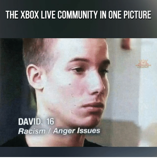 Memes, Racism, and Xbox Live: THE XBOX LIVE COMMUNITYIN ONE PICTURE  DAVID, 16  Racism Anger Issues