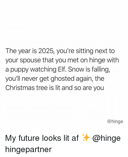 Lit AF: The year is 2025, you're sitting next to  your spouse that you met on hinge with  a puppy watching Elf. Snow is falling,  you'll never get ghosted again, the  Christmas tree is lit and so are you  @hinge My future looks lit af ✨ @hinge hingepartner