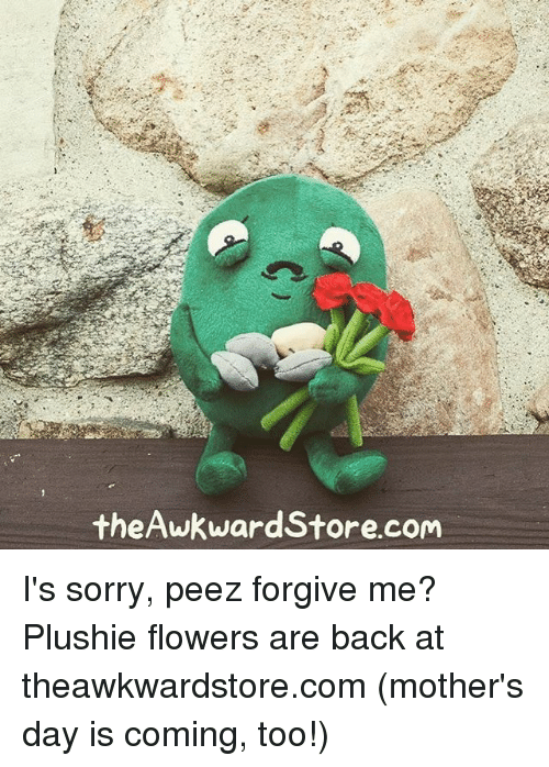 Plushie: theAwkward Store.com I's sorry, peez forgive me? Plushie flowers are back at theawkwardstore.com (mother's day is coming, too!)