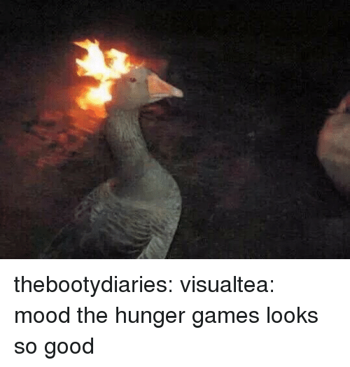The Hunger Games, Mood, and Target: thebootydiaries: visualtea:  mood  the hunger games looks so good
