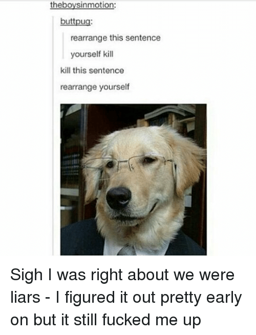 Memes, 🤖, and Still: theboysinmotion:  buttpug  rearrange this sentence  yourself kill  kill this sentence  rearrange yourself Sigh I was right about we were liars - I figured it out pretty early on but it still fucked me up