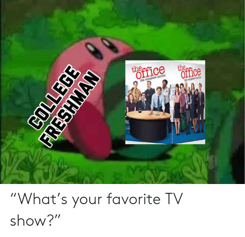 """college freshman: thecfice  the  Office  the complete series  the coplete r  COLLEGE  FRESHMAN """"What's your favorite TV show?"""""""