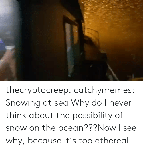 Www Facebook Com: thecryptocreep: catchymemes: Snowing at sea Why do I never think about the possibility of snow on the ocean???Now I see why, because it's too ethereal