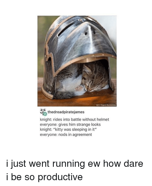 """kittie: thedreadpiratejames  knight: rides into battle without helmet  everyone: gives him strange looks  knight: """"kitty was sleeping in it""""  everyone: nods in agreement i just went running ew how dare i be so productive"""