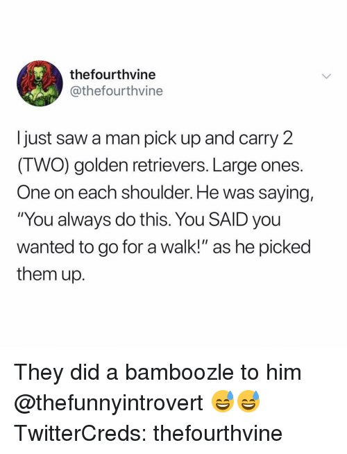 """golden retrievers: thefourthvine  @thefourthvine  I just saw a man pick up and carry 2  (TWO) golden retrievers. Large ones.  One on each shoulder. He was saying,  """"You always do this. You SAID you  wanted to go for a walk!"""" as he picked  them up. They did a bamboozle to him @thefunnyintrovert 😅😅 TwitterCreds: thefourthvine"""