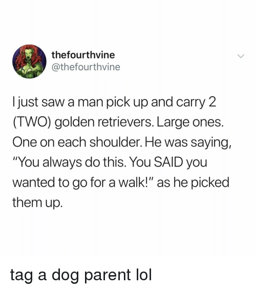 """golden retrievers: thefourthvine  @thefourthvine  I just saw a man pick up and carry 2  (TWO) golden retrievers. Large ones  One on each shoulder. He was saying,  """"You always do this. You SAID you  wanted to go for a walk!"""" as he picked  them up. tag a dog parent lol"""