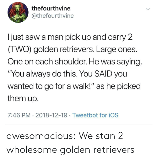 """ios: thefourthvine  @thefourthvine  I just saw a man pick up and carry 2  IWO) golden retrievers. Large ones  One on each shoulder. He was saying,  """"You always do this. You SAID you  wanted to go for a walk!"""" as he picked  them up  7:46 PM 2018-12-19 Tweetbot for ioS awesomacious:  We stan 2 wholesome golden retrievers"""