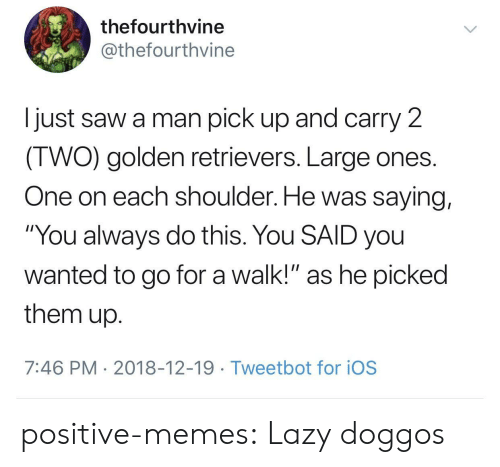 """ios: thefourthvine  @thefourthvine  I just saw a man pick up and carry 2  IWO) golden retrievers. Large ones  One on each shoulder. He was saying,  """"You always do this. You SAID you  wanted to go for a walk!"""" as he picked  them up  7:46 PM 2018-12-19 Tweetbot for ioS positive-memes: Lazy doggos"""