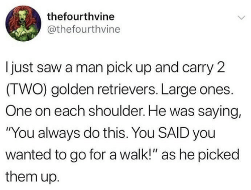 """golden retrievers: thefourthvine  @thefourthvine  I just saw a man pick up and carry 2  (TWO) golden retrievers. Large ones.  One on each shoulder. He was saying,  """"You always do this. You SAID you  wanted to go for a walk!"""" as he picked  them up."""