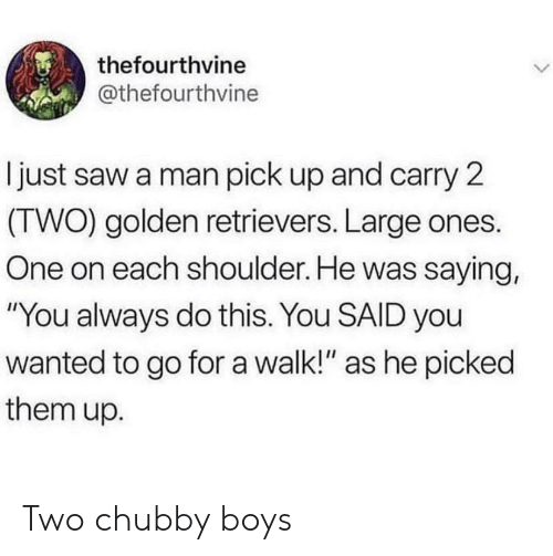 "chubby: thefourthvine  @thefourthvine  I just saw a man pick up and carry 2  (TWO) golden retrievers. Large ones.  One on each shoulder. He was saying,  ""You always do this. You SAID you  wanted to go fora walk!"" as he picked  them up. Two chubby boys"