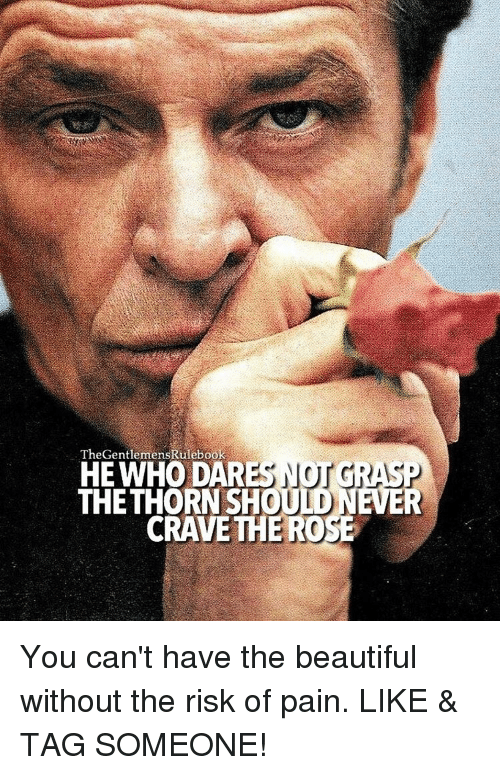 Memes, 🤖, and Dar: TheGentlemensRulebook  NOT GRASP  HE WHO DAR  THE THORN SHOUTDNEER  CRAVE THEROSE You can't have the beautiful without the risk of pain. LIKE & TAG SOMEONE!